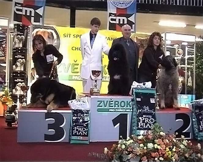 NV Olomouc 13. 1. 2007