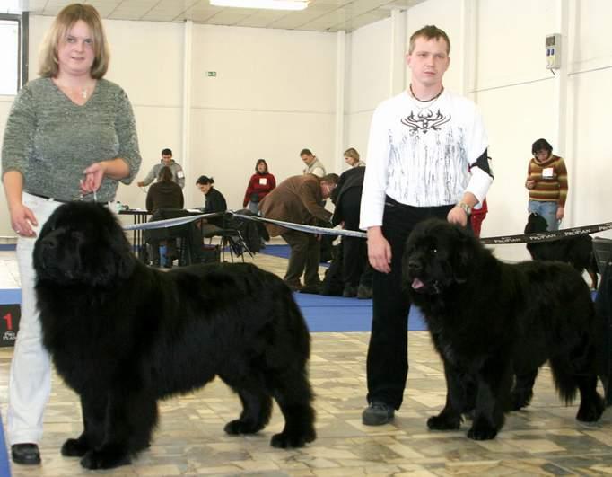 psi o NV